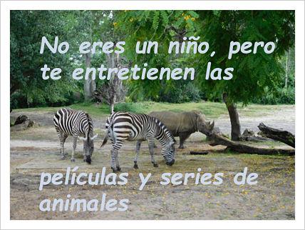series-peliculas-juveniles-animales